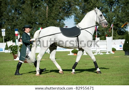 BRATISLAVA, SLOVAKIA - AUGUST 13: Demonstration of classical dressage of Lipizzan stallion during Grand Prix Bratislava on August 13, 2011 in Bratislava, Slovakia