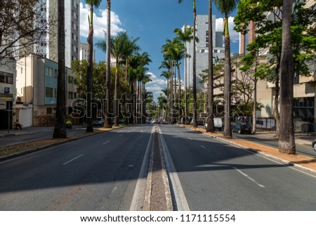 Brazil avenue with its palm trees on a sunny afternoon. Belo Horizonte, Minas Gerais, Brazil. #1171115554