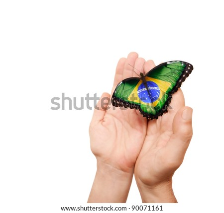Brazil flag butterfly on a man's hands.