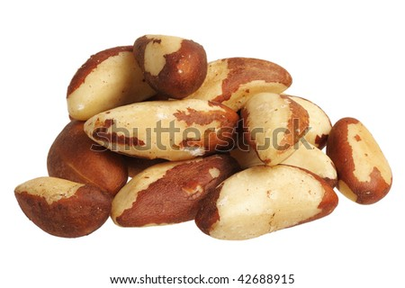 Brazil nut (Bertholletia excelsa) on a white background, isolated.