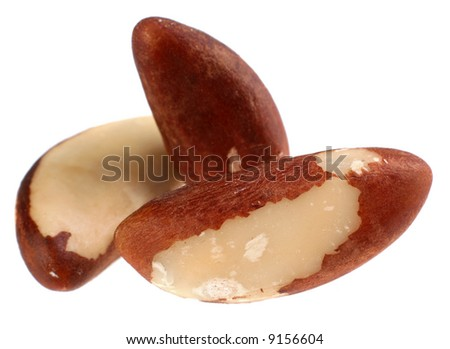 Brazil nut detail isolated on white background