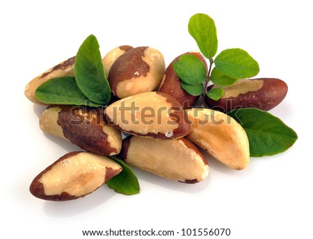 Brazil nuts close-up isolated on white background