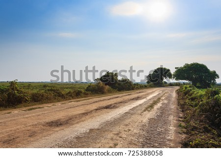 Brazilian dirt road in perspective. Famous Brazilian Transpantaneira dirt road. Pantanal area, Brazil #725388058