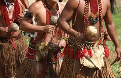 Brazilian Indians of the Pataxó ethnic group during their daily activities of dance, hunting and fishing