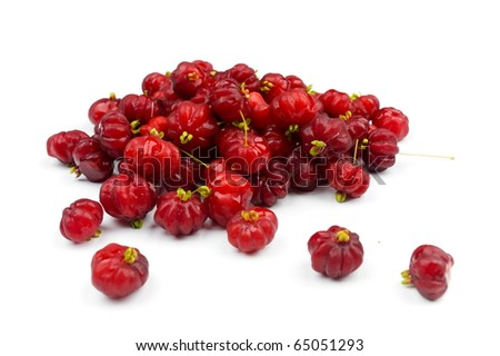 Brazilian pitanga a.k.a. Surinam Cherry . - stock photo