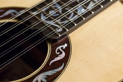 Brazilian ten strings steel guitar made by luthier Luciano Queiroz