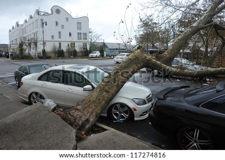 BRBROOKLYN, NY - OCTOBER 30:: Fallen tree lies across a car in the Sheapsheadbay neighborhood due to flooding from Hurricane Sandy in Brooklyn, New York, U.S., on Tuesday, October 30, 2012.