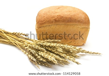 bread and wheat ears on a white background