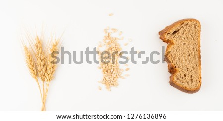 bread and wheat spike