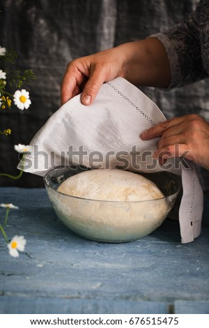 Bread dough rising in a bowl before oven baking dough process flourish