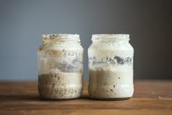 Bread sourdough rye starter. 2 different types.