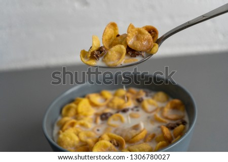 Breakfast with cornflakes and milk #1306780027