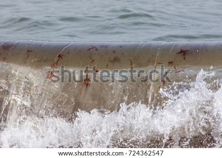 Breaking sea wave carrying red algae seaweed plants and particles in suspension. Marine flora particulate carried by ocean water. #724362547