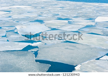 breaking spring ice floe at the sea
