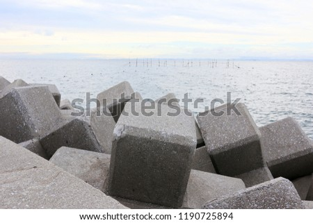 Breakwater and Tetrapods, at Ooita Prefecture, Japan #1190725894