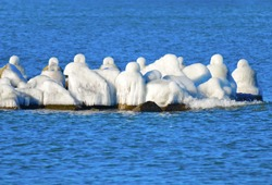 Breakwater in Świniojście in a winter coat, covered with ice. Nature beautifies man's work by creating ice sculptures from concrete blocks.