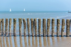 Breakwater on a beach of Holland, sailboats in background