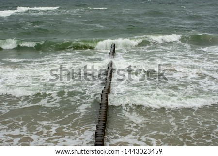 Breakwater poles. These wooden breakwaters serve to protect the coast against the  of destructive sea waves. #1443023459