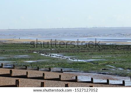 Breakwaters on a pebble beach.