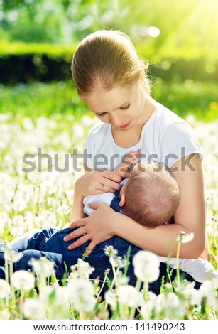 breastfeeding. mother feeding her baby in nature green meadow with white flowers