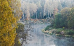 Breathtaking aerial view of golden birch forest and river in a morning fog. Reflections on water. Gauja national park, Sigulda, Latvia. Eco tourism, travel destinations, environmental conservation