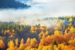 Breathtaking panoramic aerial view of the hills of colorful red, orange and yellow trees in a mixed coniferous forest in a morning fog. Fairy autumn landscape. Gauja national park, Sigulda, Latvia