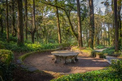 Breathtaking view of tropical garden ) a picnic table and giant trees on gloomy day. Queen's Fern Valley, Pena Park, Sintra - Cascais Natural Park, Lisbon Region, Portugal, Europe.