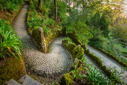 Breathtaking view of tropical garden with tree ferns (Cyatheales) and giant trees on gloomy day. Queen's Fern Valley, Pena Park, Sintra - Cascais Natural Park, Lisbon Region, Portugal, Europe.
