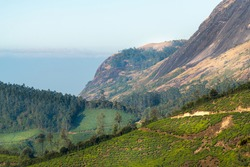 Breathtaking views of the mountains, valley's and tea estates of Munnar in Kerala, India.