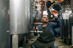 brewer examining taste and color of the beer in his craft beer brewery