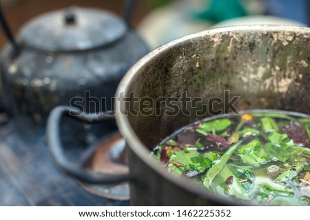 Brewing sacred ayahuasca medicine amazon