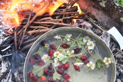 Brewing tea in a metal pot with red rose hips and flowers by fire