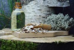 Brich bark betulin organic extract