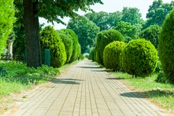 Brick path in cemetery with green bushes, trees and gate in the distance.
