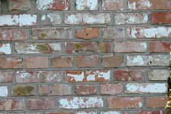 Brick price of different colors