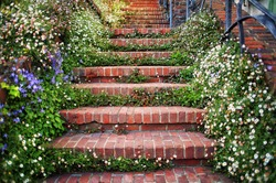 Brick staircase lined with flowers and plants in front of residential home