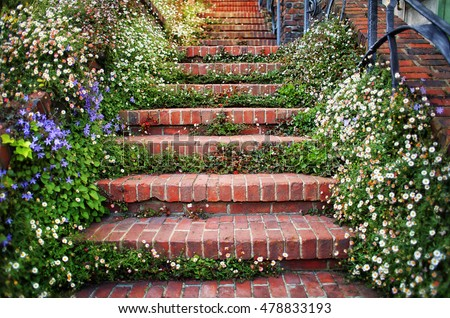 brick staircase lined with...