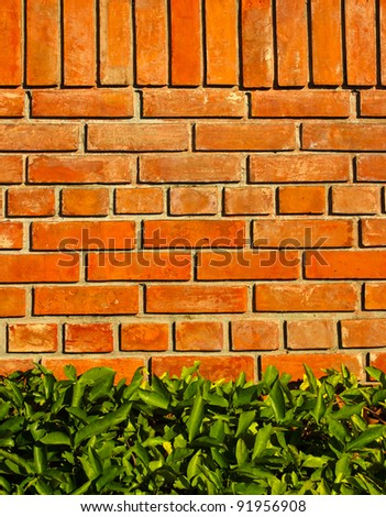 Brick wall background with green leaf