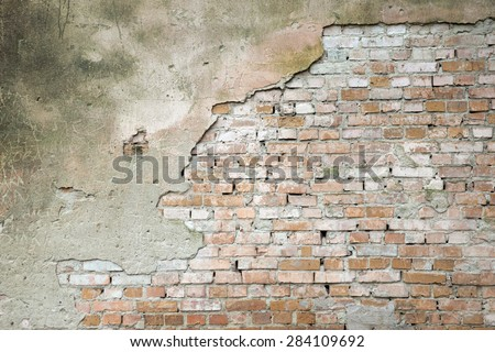 brick wall for background or texture #284109692