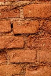 Brick wall on a sunny day