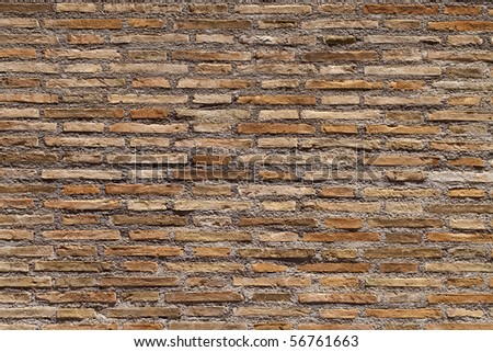 brick wall with sunny atmosphere