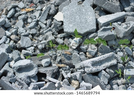 Bricks Garbage tiles that cannot be degraded themselves have been dumped in community forest areas, public areas.