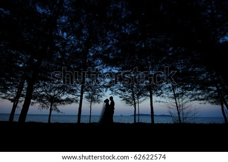 bridal in forest silhouette