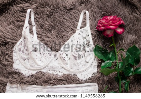 Bridal white lingerie on the brown background. Lace sexy underwear with rose behind it. #1149556265