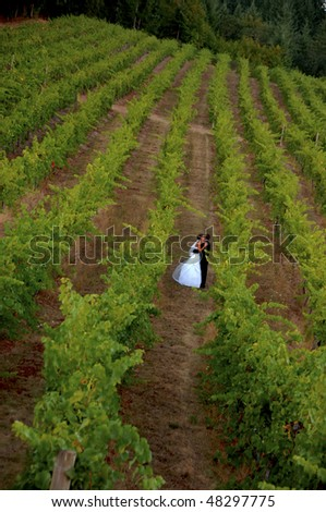 Bride and groom couple walking and kissing in a vineyard wedding.