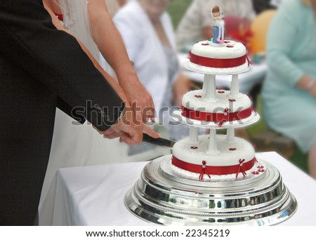 Bride and Groom cutting the Wedding Cake.