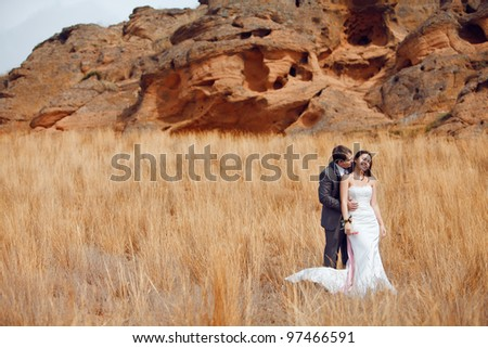bride and groom in the field with mountain