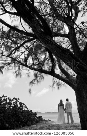 Bride and Groom under a Large Tree Silhouette
