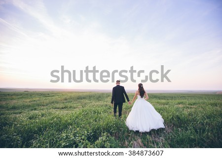 Bride and groom walking and holding hands on a meadow. Wide angle sunset photo. #384873607
