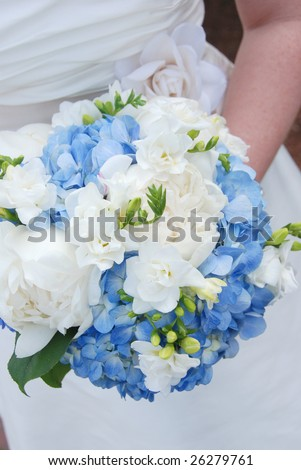Bride holding wedding bouquet of Hydrangeas